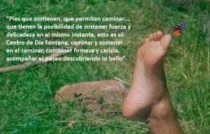 imagen_programa_fontana